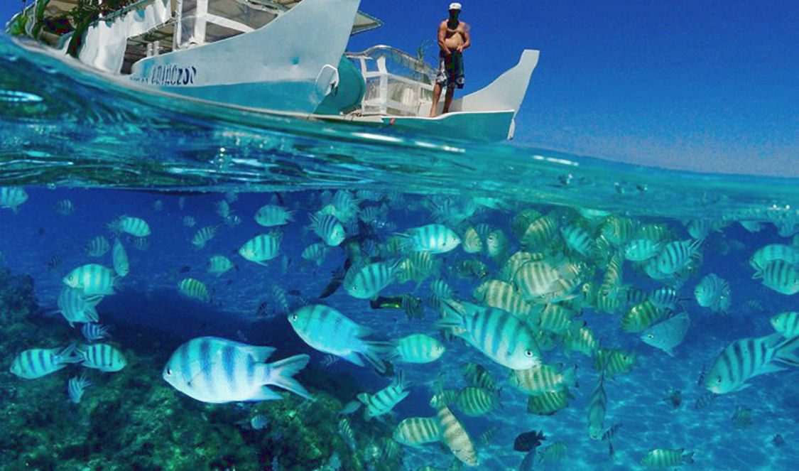 boat tour and inside view of bora bora lagoon during your vacation