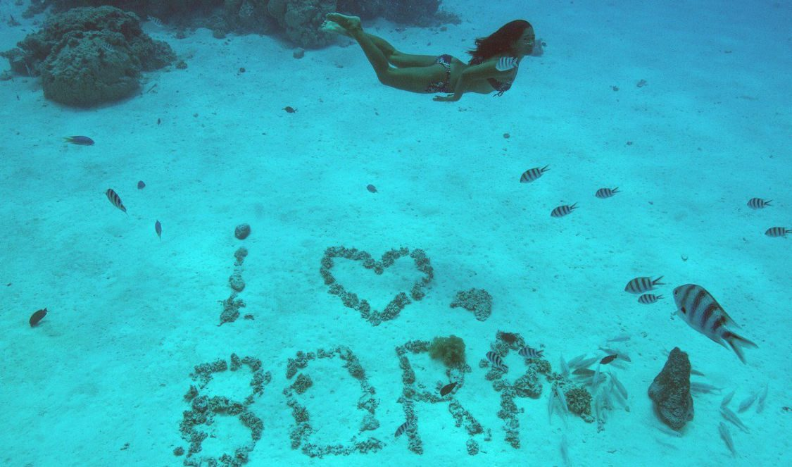 classic snorkeling tour in bora bora during your vacation