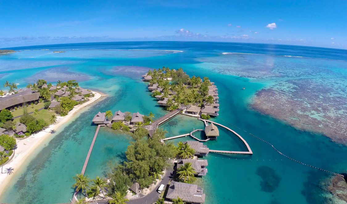 dolphin center at the intercontinental moorea hotel for a moorea vacation