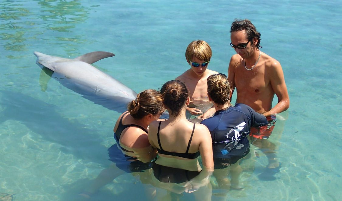 educational program at dolphin center during a moorea family vacation