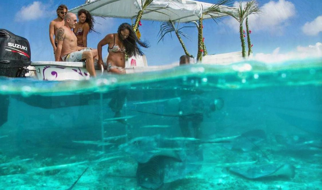 explore snorkel bora bora lagoon during your vacation