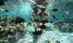 discover the natural aquarium on huahine island