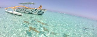 lagoon tour hotel moorea package with intercontinental hotels