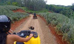 quad tour on moorea island