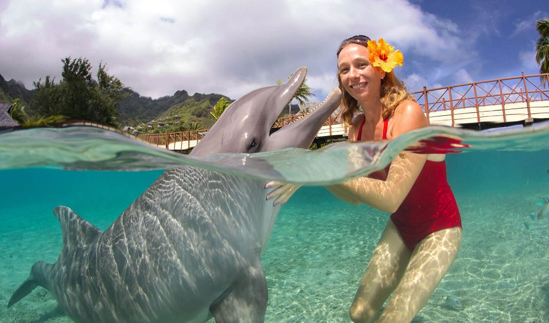take pictures with a dolphin at dolphin center during a moorea vacation