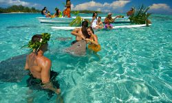 lagoon tour on moorea island